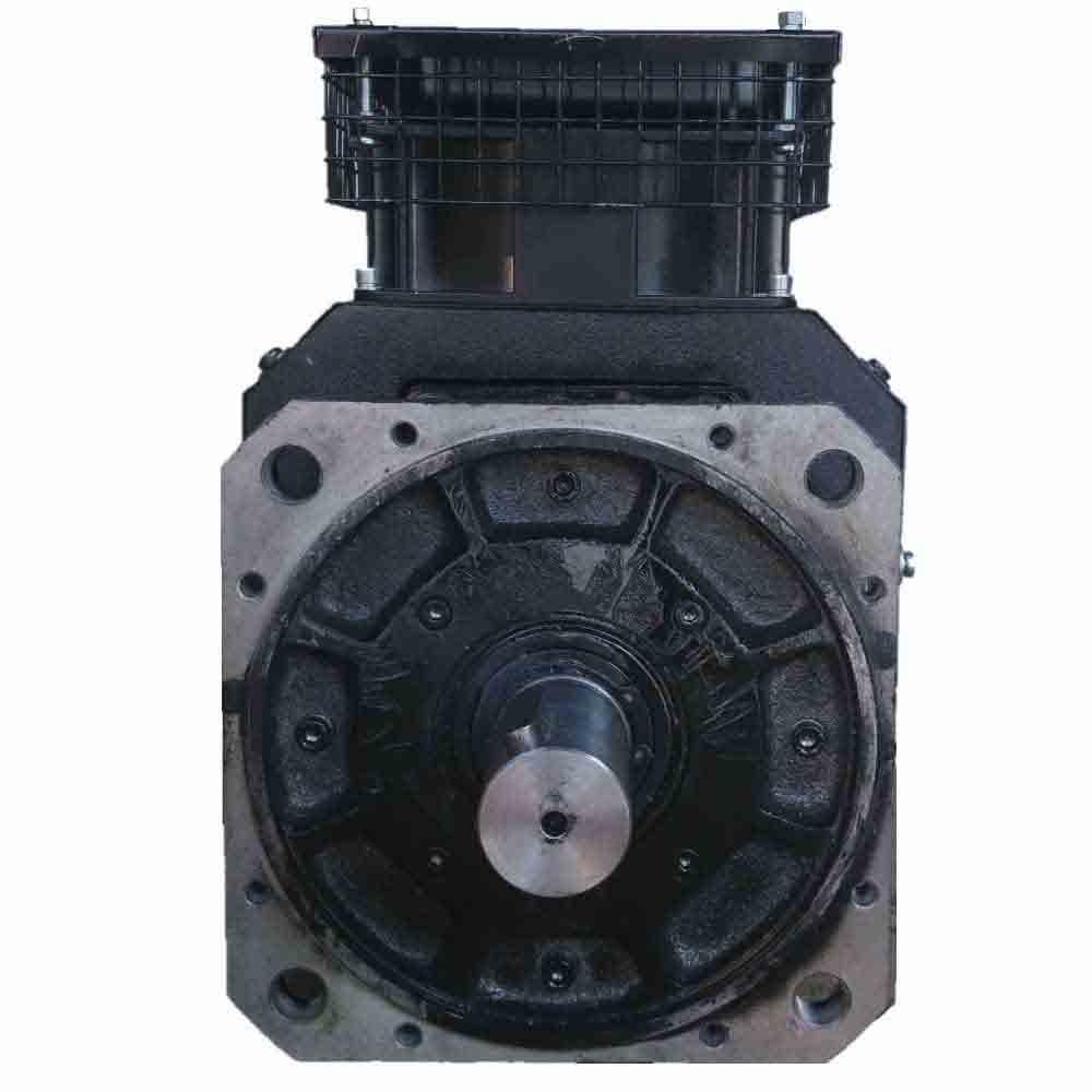 High-torque DC motor 5MT-C foto  1