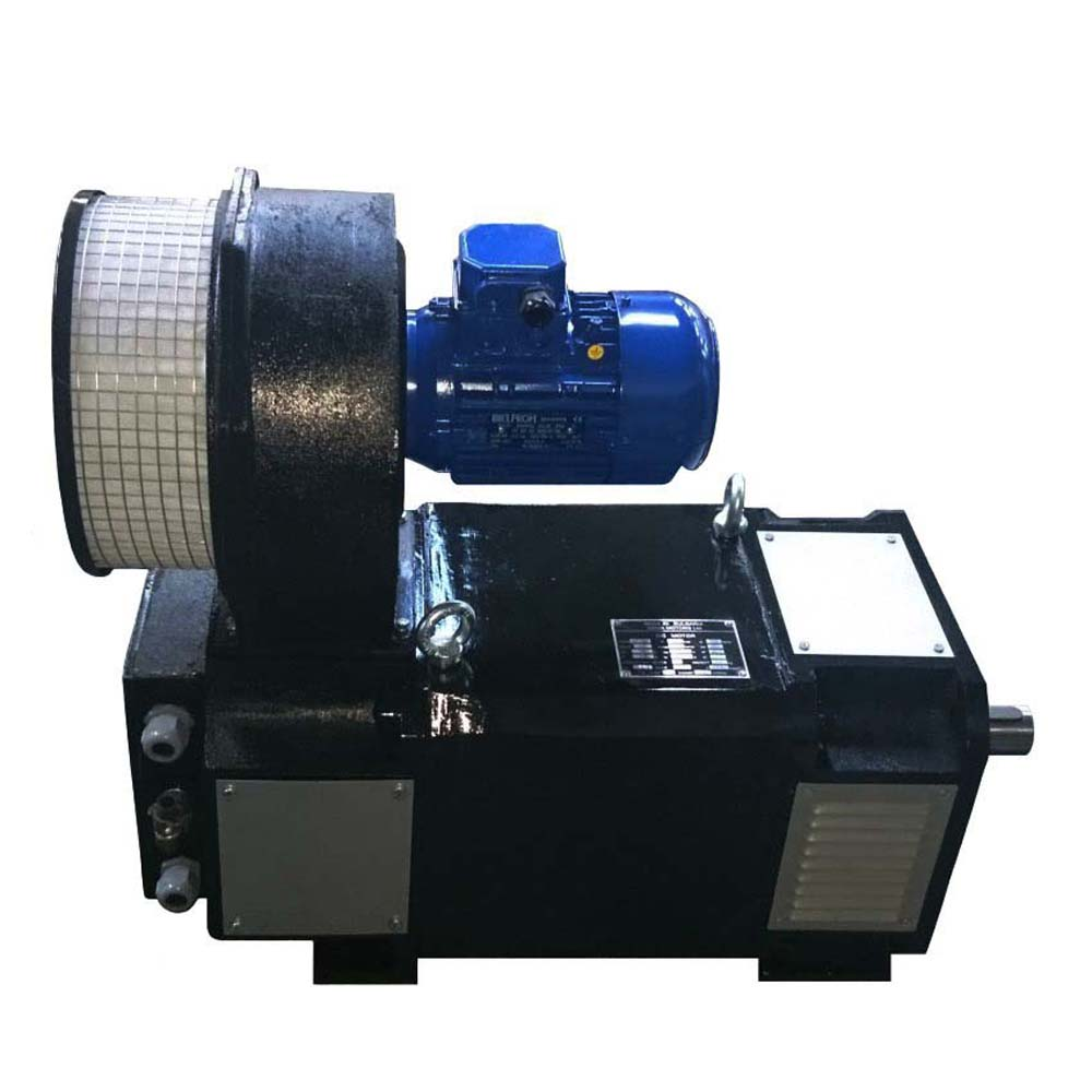 DC motor MP160L foto  1